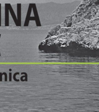 """""""Plaža Nesanica"""" u """"Apolu"""""""