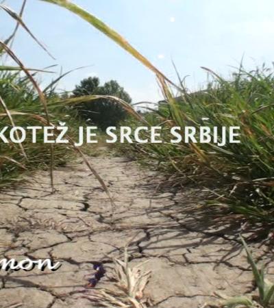 Kotež je srce Srbije