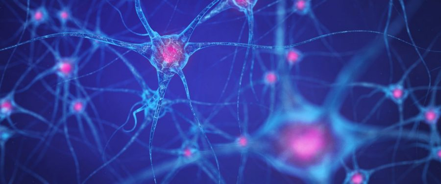 Mozak – zvezdana vaseljena ili kontejner