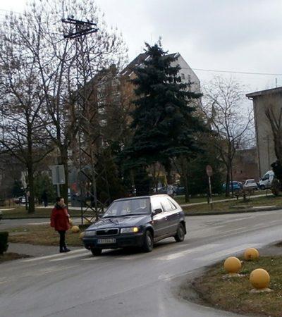 """(Lopovski) slučaj službenice banke i (njen """"napredni"""" kraj)"""