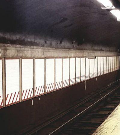 Zima u mom gradu: životna filozofija jednog bureka