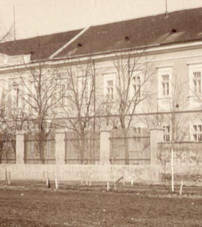 Sanatorijum dr Vladimira Aleksića i Ruska bolnica