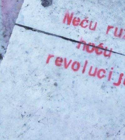 Neću ružu, hoću revoluciju!