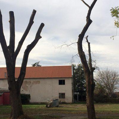 Brestovački masakr motornom testerom