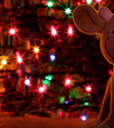 Prvi decembarski dani