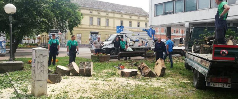 Gradski park na udaru naprednjačke destrukcije