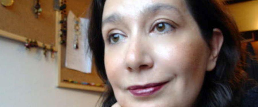 Aida Hozić: U Americi se rasa i klasa poklapaju