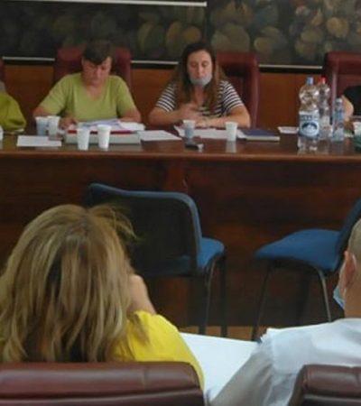 Članovi Komisije za planove Grada Pančeva pojačali kampanju obmana