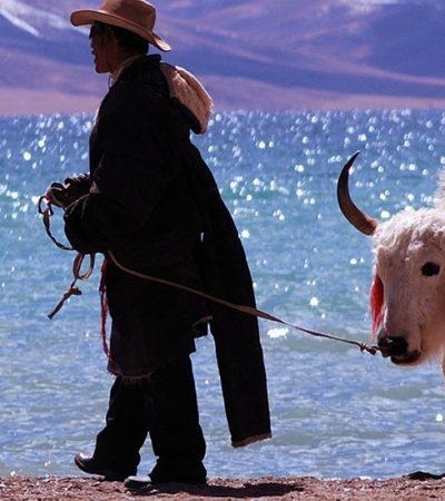 Malo, malo, pa na Tibetu