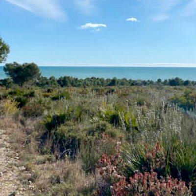 Miris Mediterana, porodični život i tako to