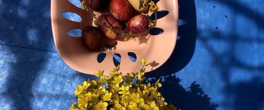 Proleće je vratilo sve